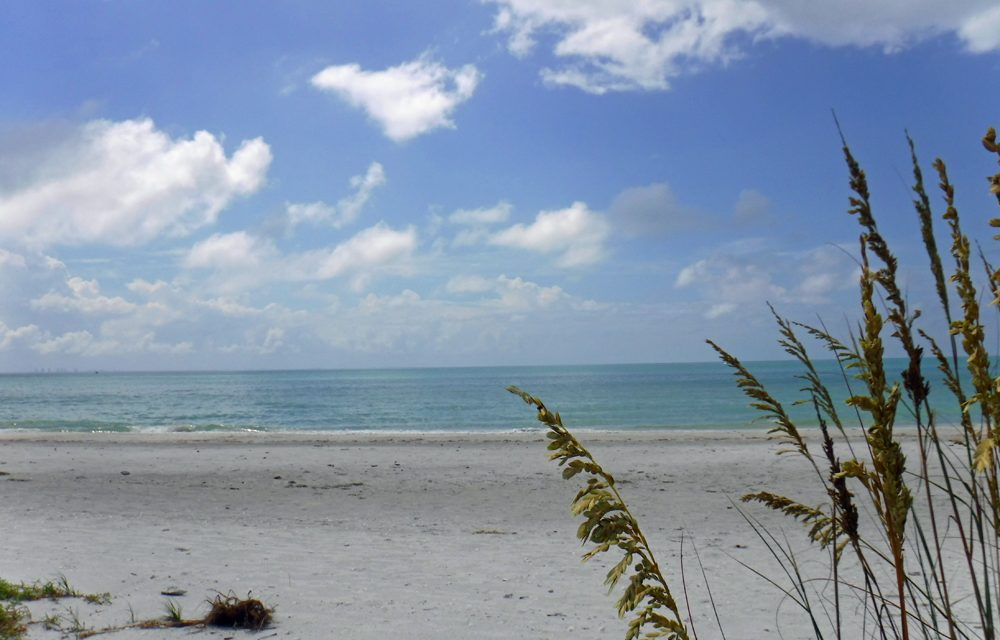 Sanibel Island for families: Wildlife, beaches, and camping