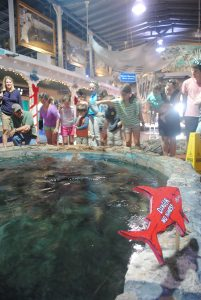 Kids at Key West Aquarium