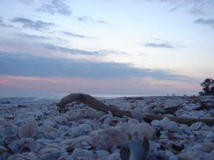 Sanibel beach at dusk
