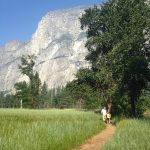 Planning your trip to Yosemite National Park
