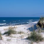 Weekend family travel ideas in Florida – and one NOT in Florida