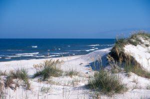 Dunes of Cape San Blas, Florida