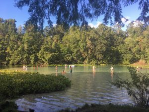 Alexander Springs is a great recreation area for families