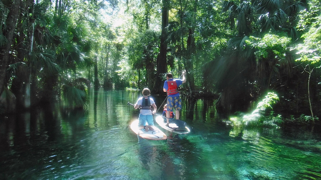 Exploring Ocala's freshwater springs