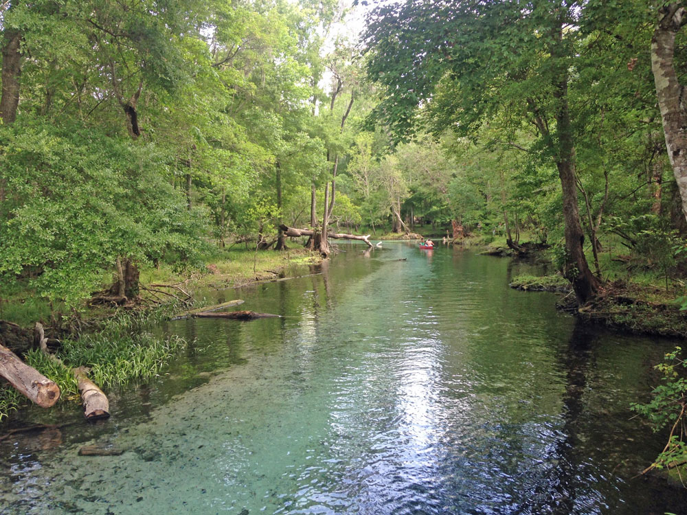 Spring break family road trip: Gilchrist Blue Springs State Park