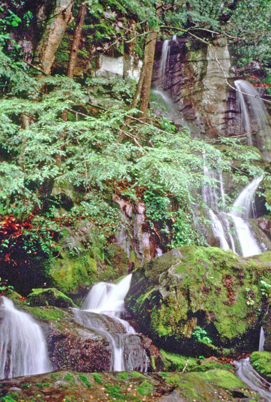 Place of a Thousand Drips is a waterfall not far from Gatlinburg in Great Smoky Mountains National Park