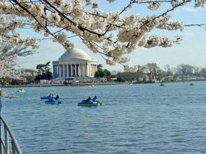 The Thomas Jefferson Memorial sits on the Tidal Basin