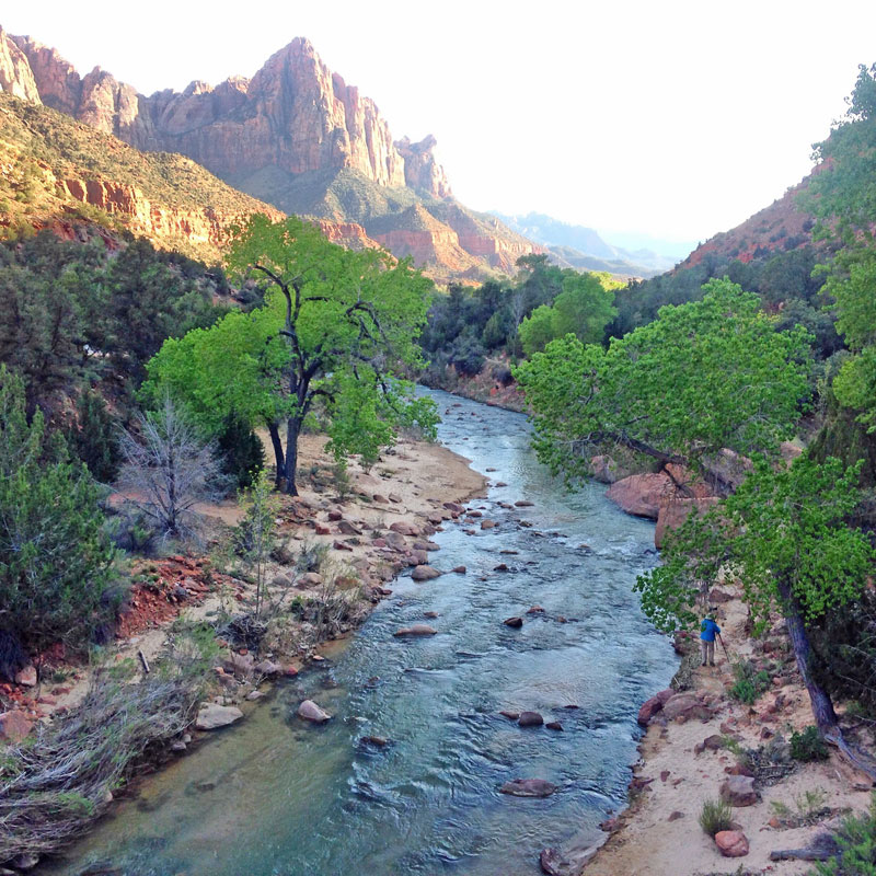 Zion National Park should be high on your list of family road trip ideas