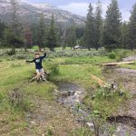 Yellowstone National Park with kids